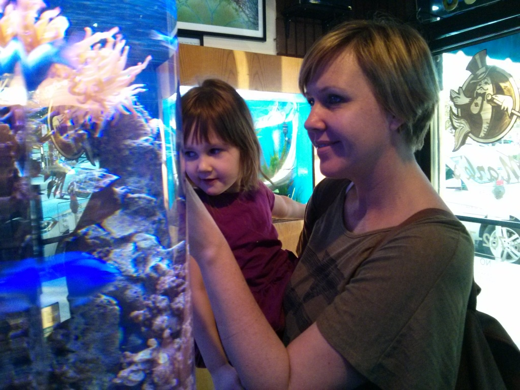 fish shopping